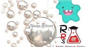 silver nanoparticles antimicrobial properties halt Brain-eating amoebae