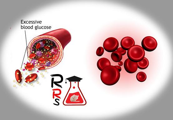 Diabetes Changes Red Blood Cells Morphology