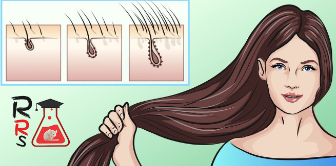 how to grow your hair faster and longer - new study