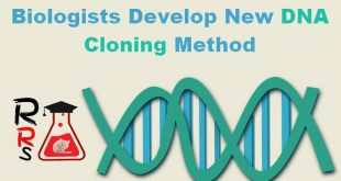 Biologists develop new DNA cloning method