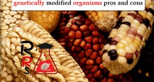 genetically modified organisms pros and cons