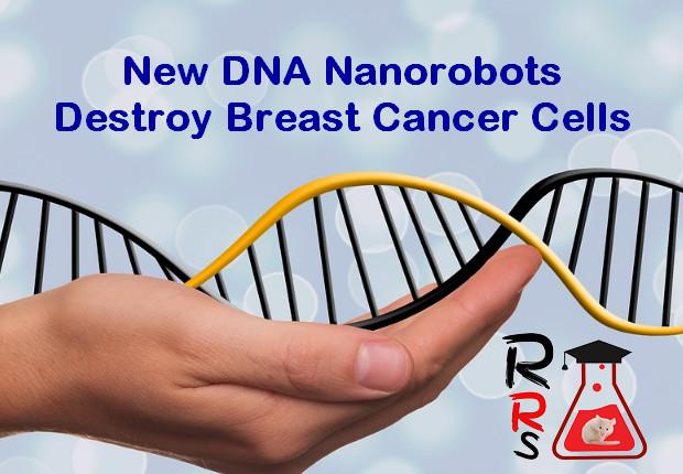 New DNA Nanorobots Destroy Breast Cancer Cells