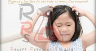 remedy for lice in the hair at home lice removal